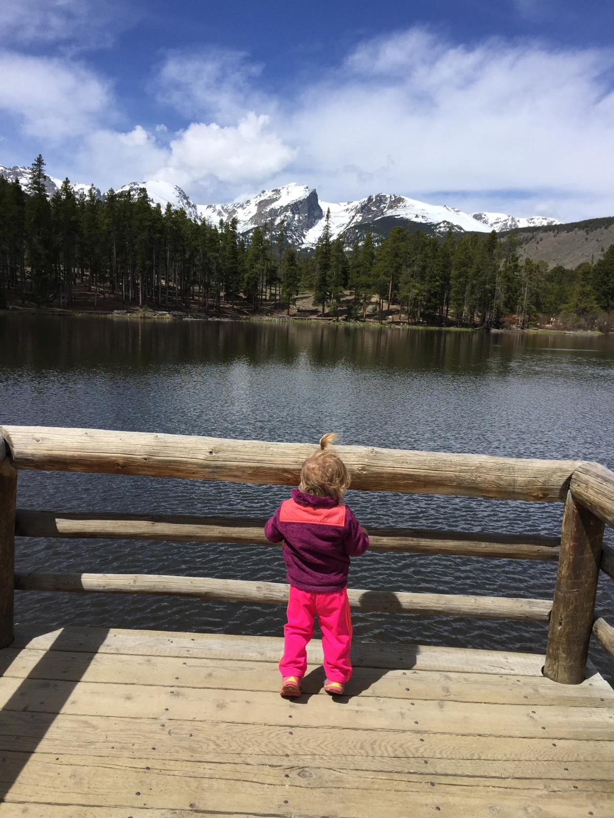 How to Reserve Camping Spots in Rocky Mountain National Park