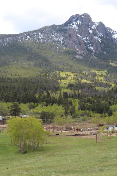 Twin Sisters Peaks in RMNP