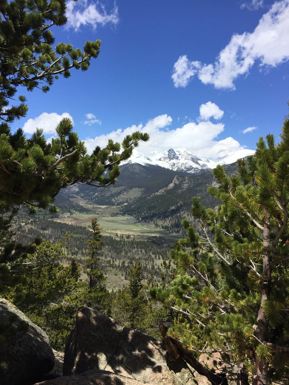 Deer Mountain – a Family Friendly Summit Hike in Rocky Mountain National Park