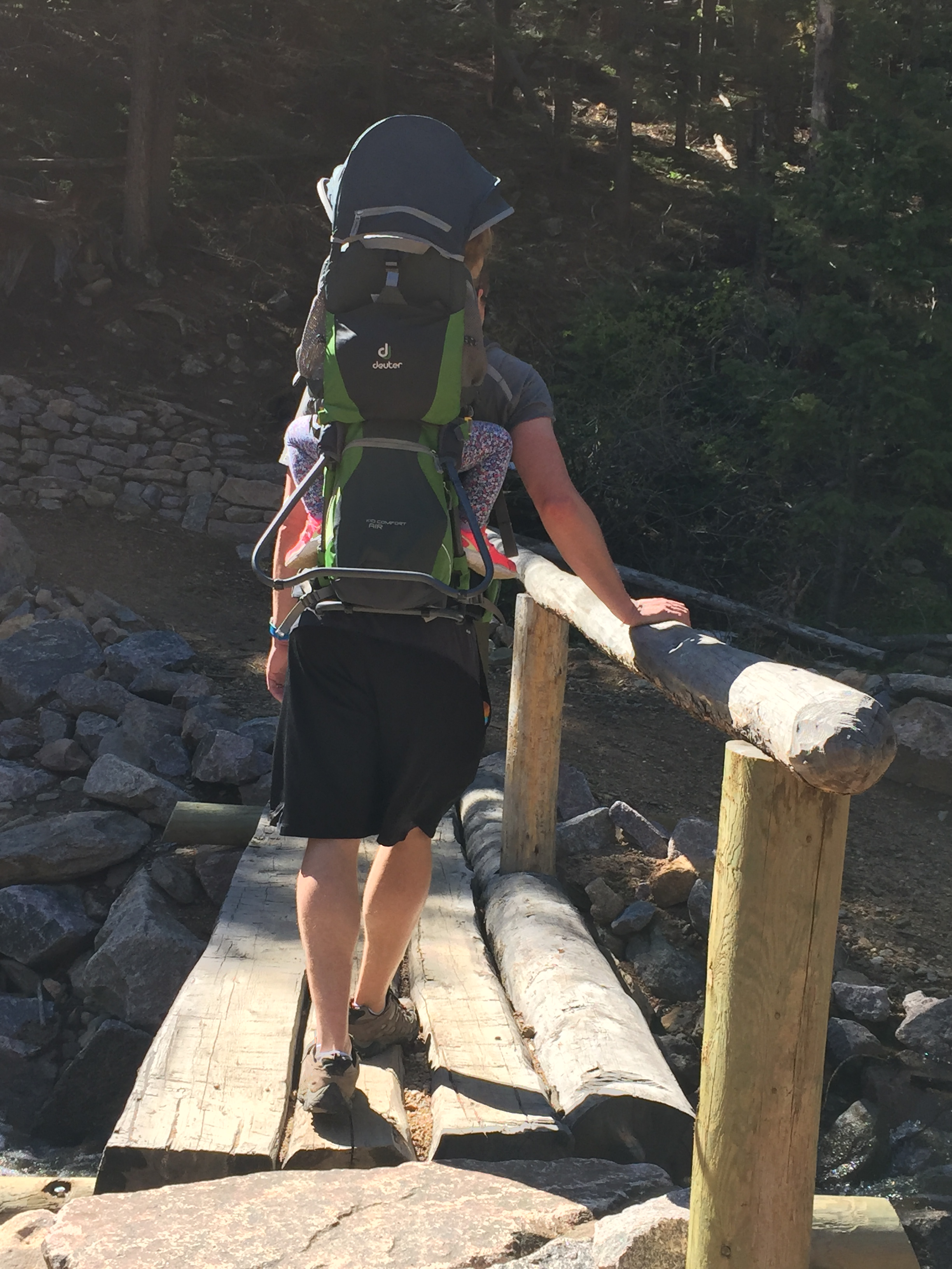 Homer Rouse trail, dog friendly hiking trail in Estes Park, CO