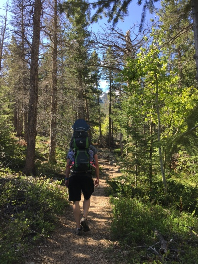 Homer Rouse trail