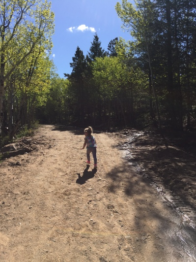 Homer Rouse trail. Dog friendly hike in Estes Park
