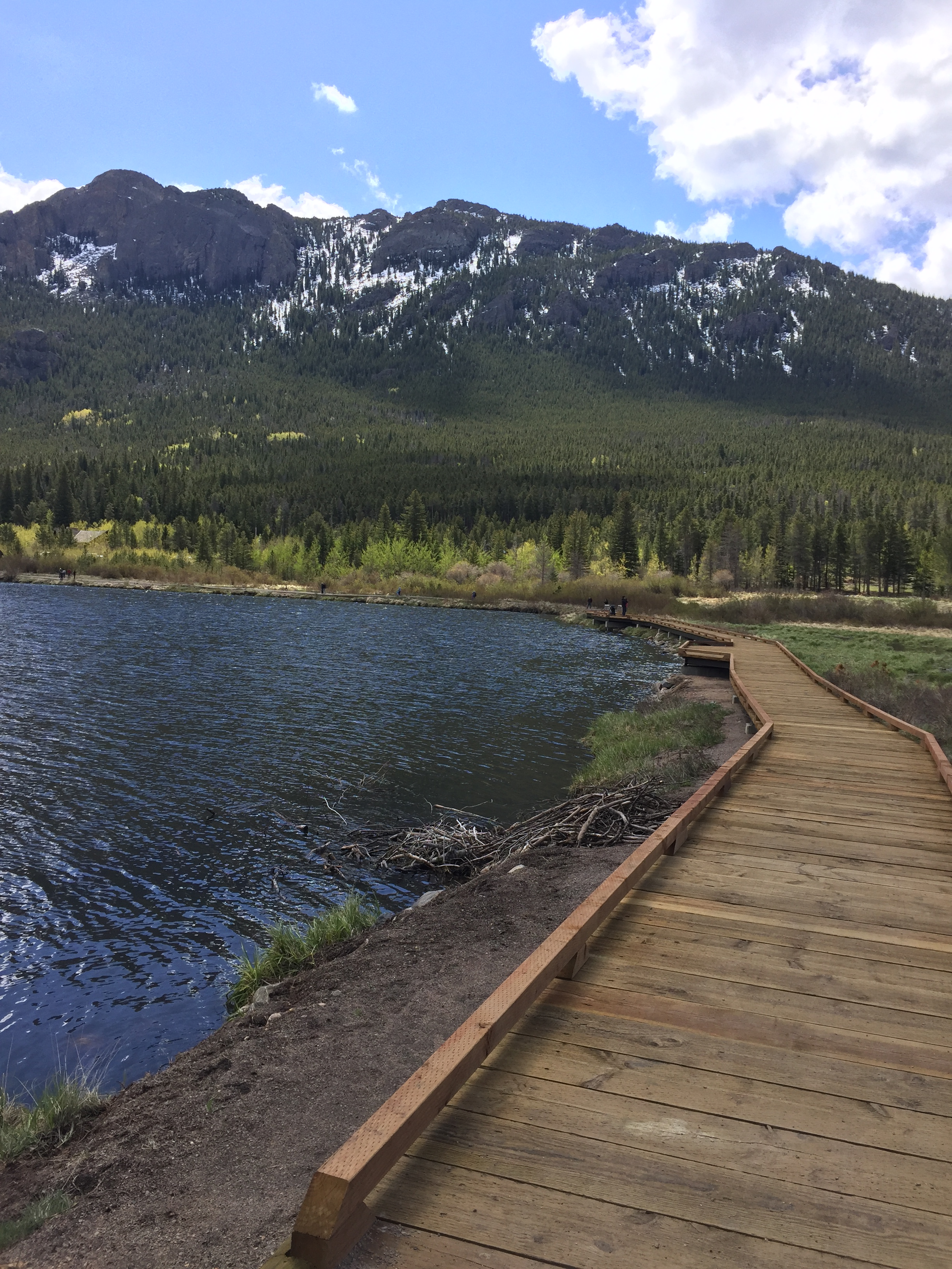 Lily Lake is a favorite family destination in RMNP