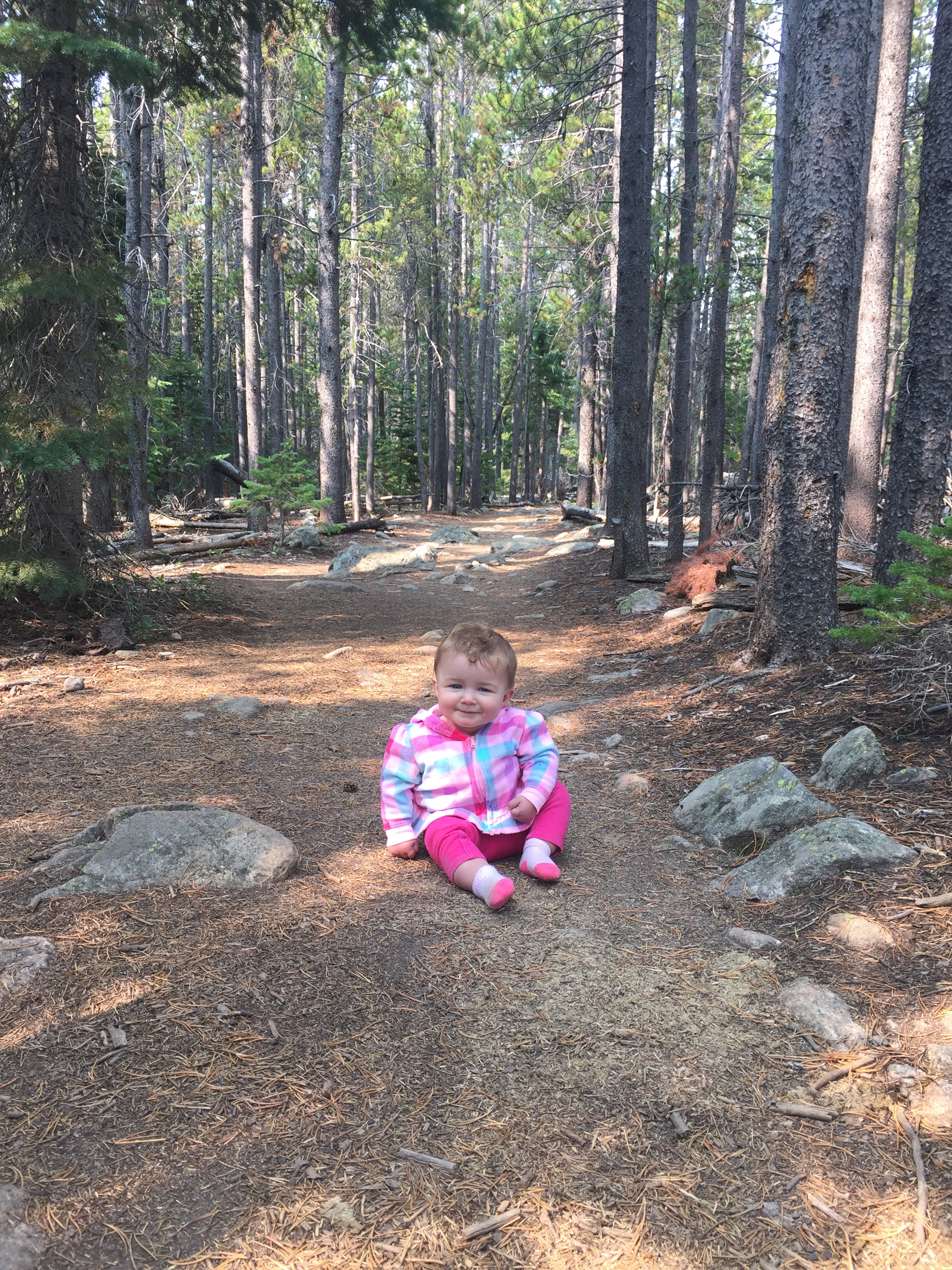 Bierstadt Lake trail - hiking with a baby