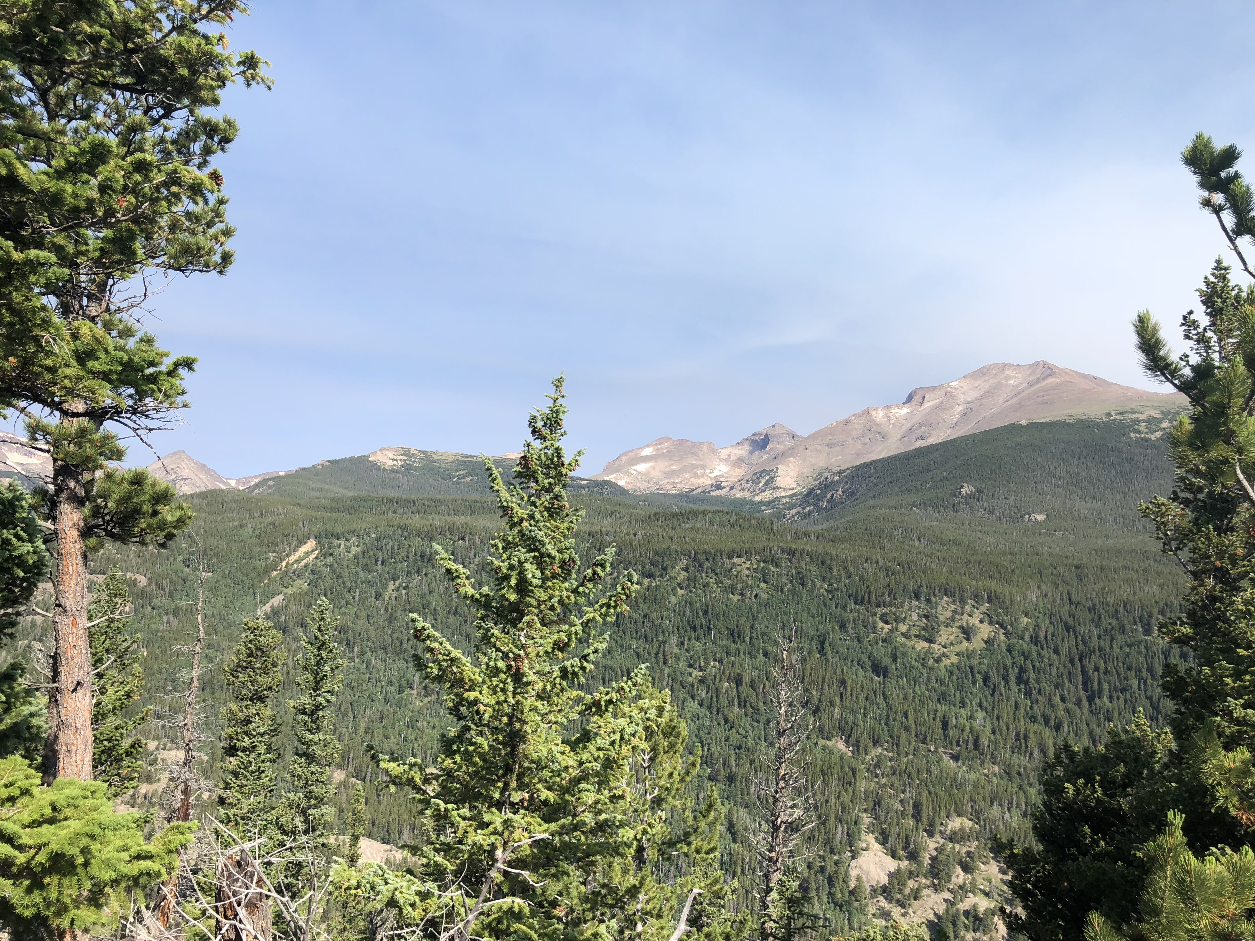 rocky mountain views in wild basin