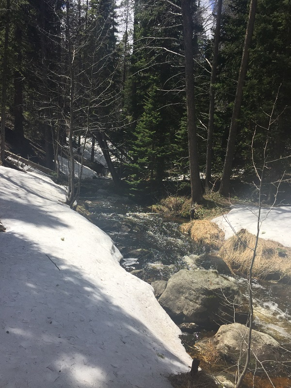 Mill Creek melted snow