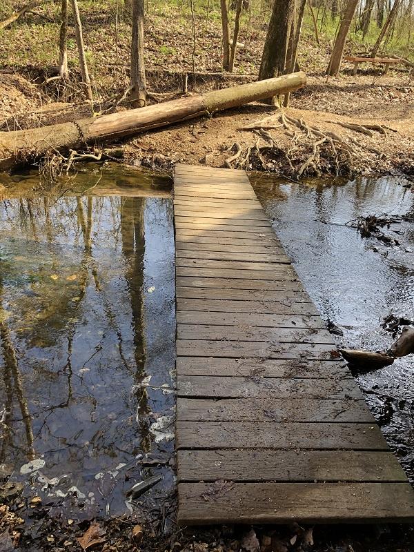 northwest arkansas creek hike