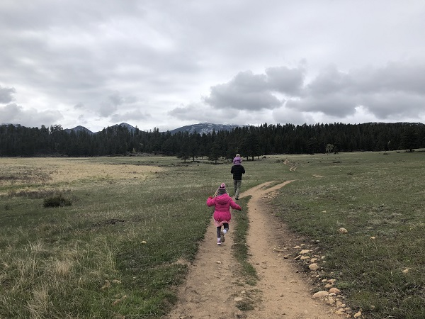 hiking Upper Beaver Meadows in Rocky Mountain National Park