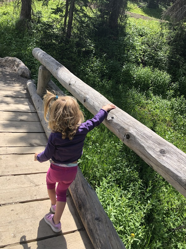 Kids cross over wooden bridges on the trail that goes around Lake Irene