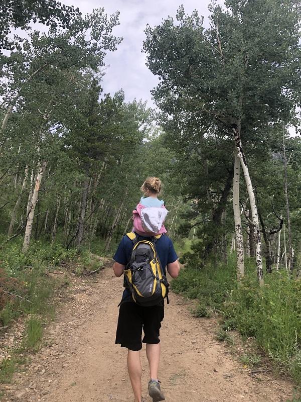Aspens in Estes Park Colorado