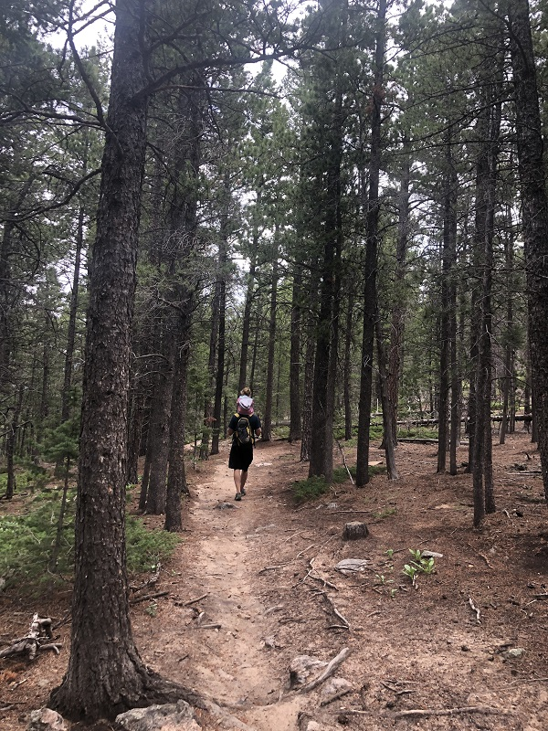 Homer Rouse Trail is a dog friendly trail in Estes Park Colorado