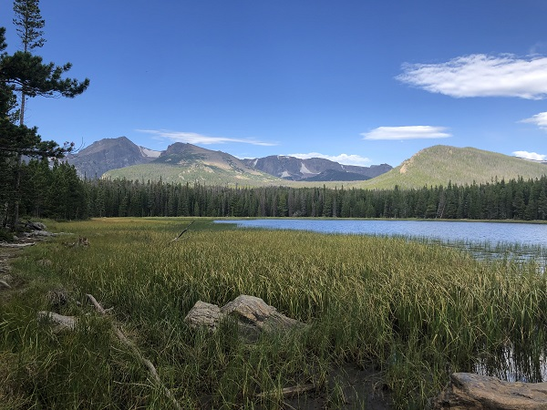 Bierstadt Lake hike in rocky mountain national park. hike under 3 miles. features mountain views, wildlife spot in rocky mountain national park, moose