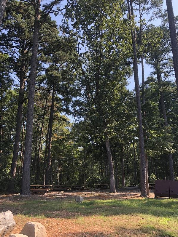 picnic hobbs state park