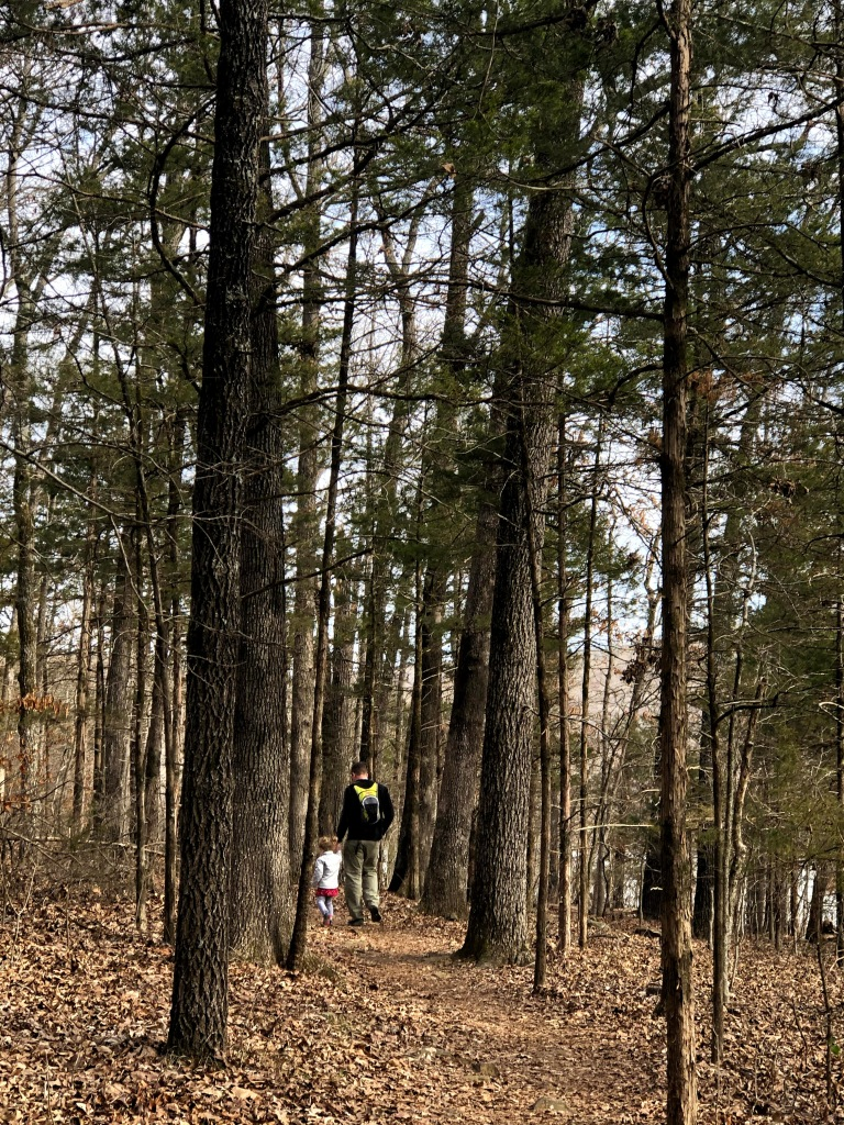 Hiking trail at Lake Fort Smith State Park