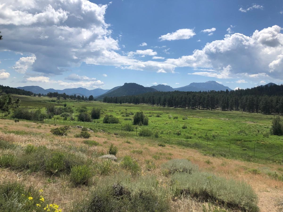 Safer at Home –Colorado