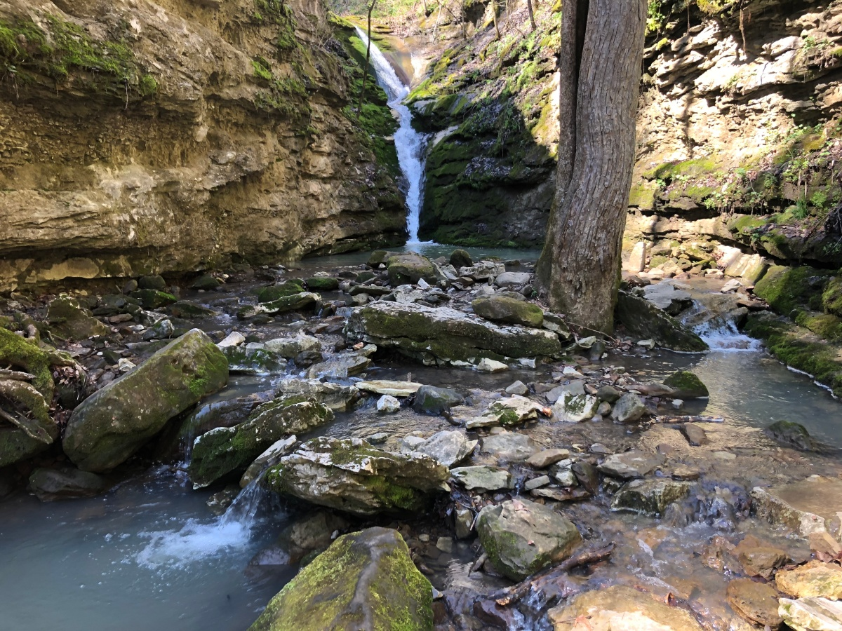 Hiking Arkansas: Elise Falls in the Smith Creek Nature Preserve