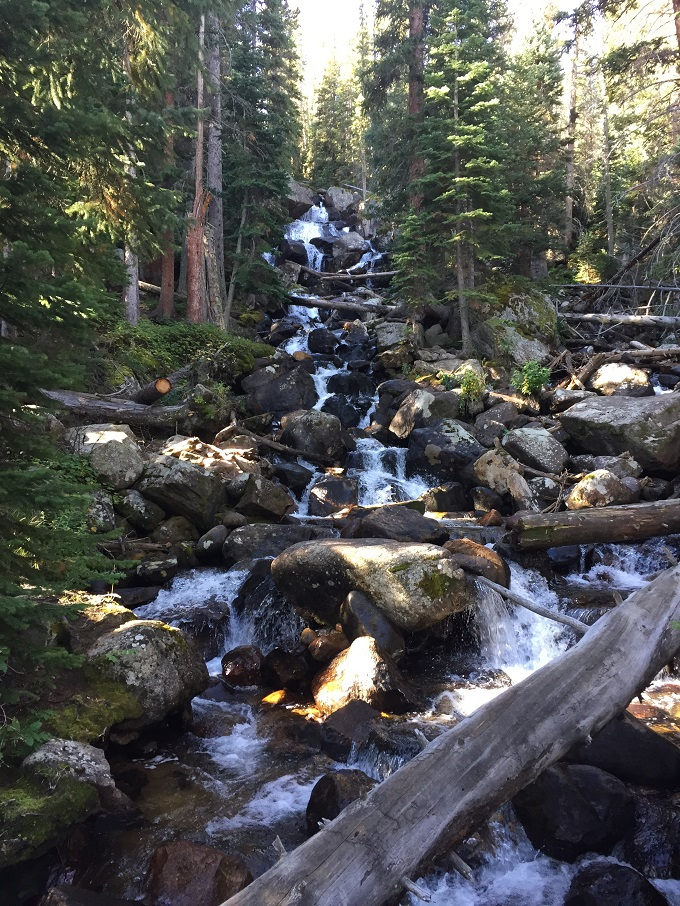 Calypso Cascades is a top hike  located in Wild Basin of Rocky Mountain National Park.
